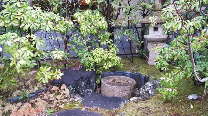 15年ほど経過し苔も生えた蹲の庭