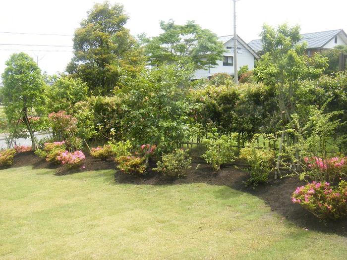 芝生と植栽の別荘の庭