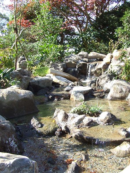 自然風の滝~流れ