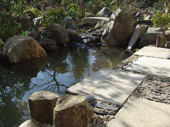 自然風流れ~池