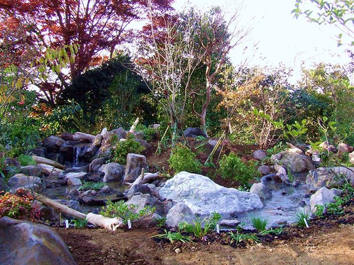 自然風滝口~流れ